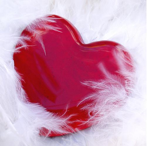 بالصور صور قلب احمر جميل 20160629 934