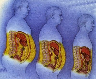بالصور نسبة الدهون فى الجسم 20160630 1199