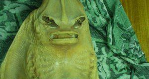صوره انها حقيقة وليست مزحة تم تصوير حورية البحر حقيقية