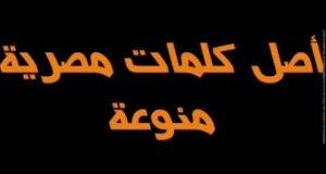 بالصور كلمات وحكم منتشرة باللهجة المصرية hqdefault 407 300x160