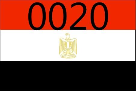 بالصور ما هو مفتاح مصر الدولى 0020