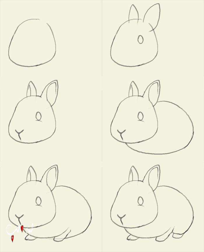 صوره تعليم رسم الحيوانات