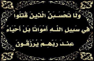 صوره خواطر في رثاء الشهداء