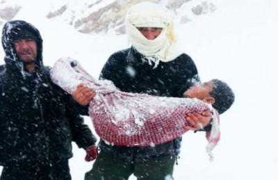 صوره قصة الطفل الذي مات من البرد  قصه حقيقيه ينفطر لها