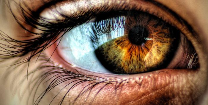 صوره صور اجمل العيون العسلية
