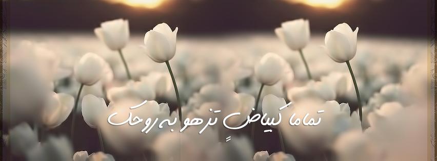 صوره دعوة للتفاؤل من القران والسنة