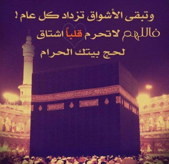 http://www.arabyonline.com/images/2013/10/494055-2-or-1380981736.jpg