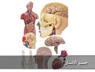 صوره الاعجاز في جسم الانسان