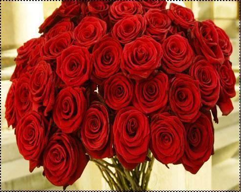 http://forum.imageslove.net/photos/img_1383655631_620.jpg