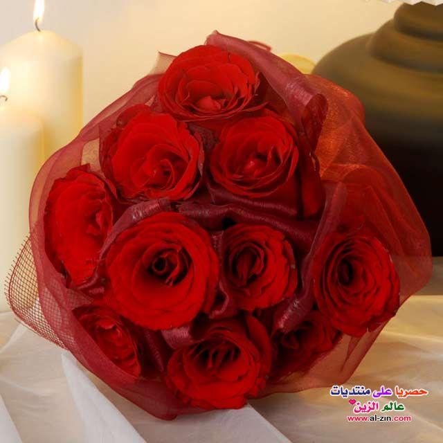 http://www.al-zin.com/vb/uploadcenter/uploads/11-2012/PIC-857-1354172543.jpg
