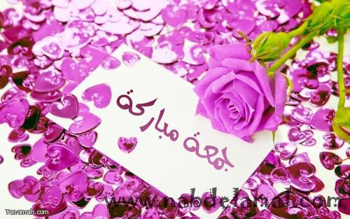 http://www.nabdelamal.com/upload//uploads/images/domain-17b3918758.jpg