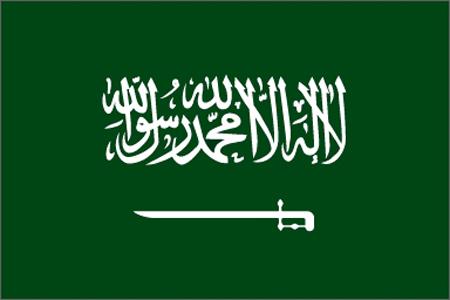 بالصور علم المملكة السعوديه الجديد 20160702 660