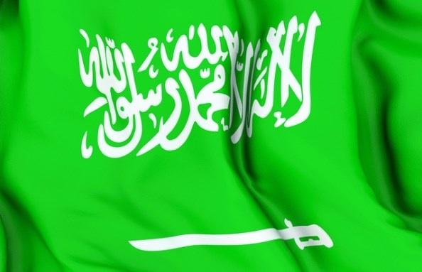 بالصور علم المملكة السعوديه الجديد 20160702 664