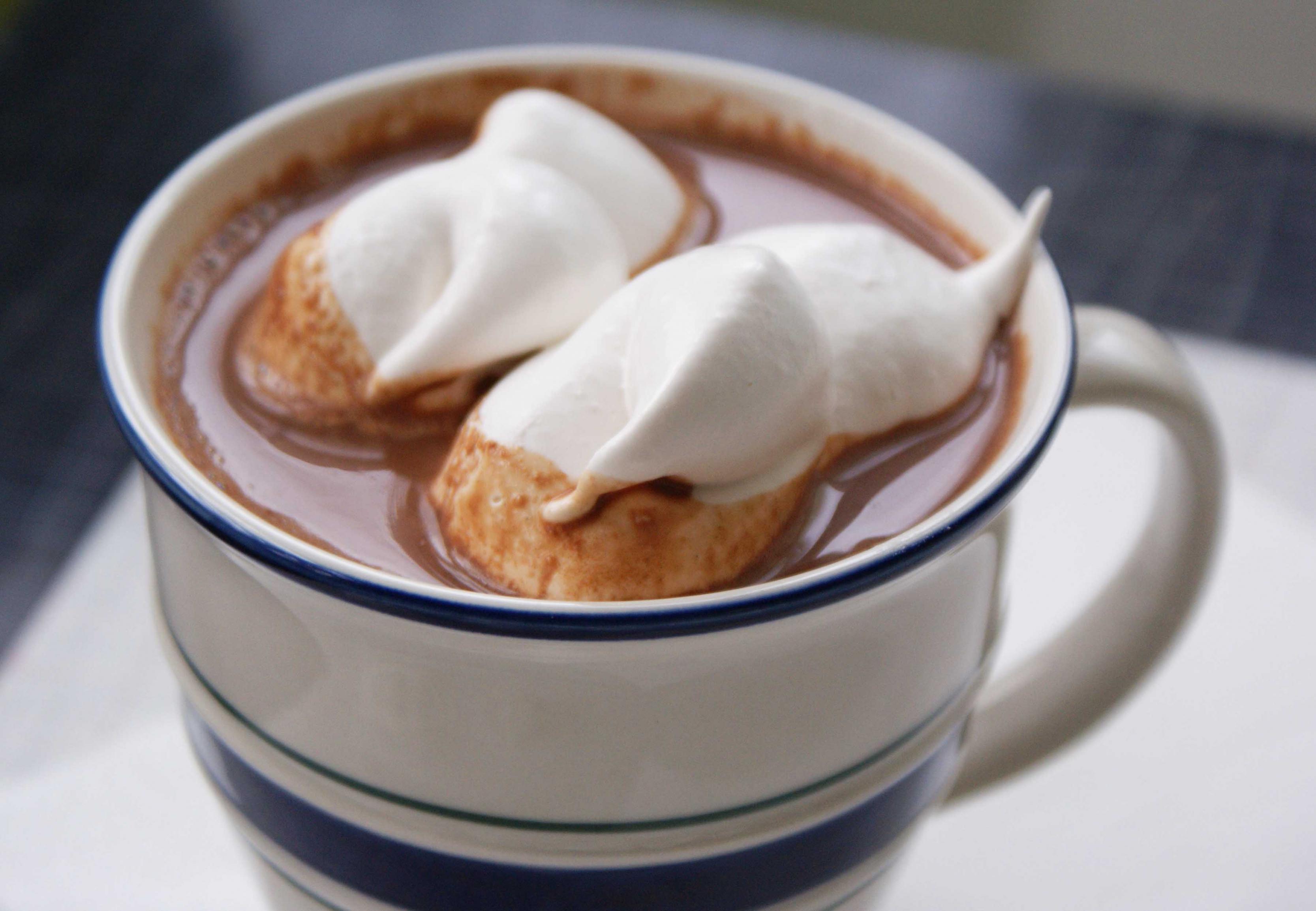 https://www.thaqafnafsak.com/wp-content/uploads/2014/11/homemade-hot-chocolate-4.jpg