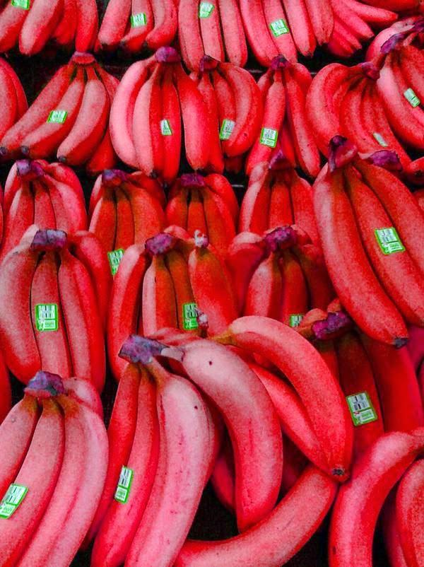 صوره مجموعة صور عن الموز
