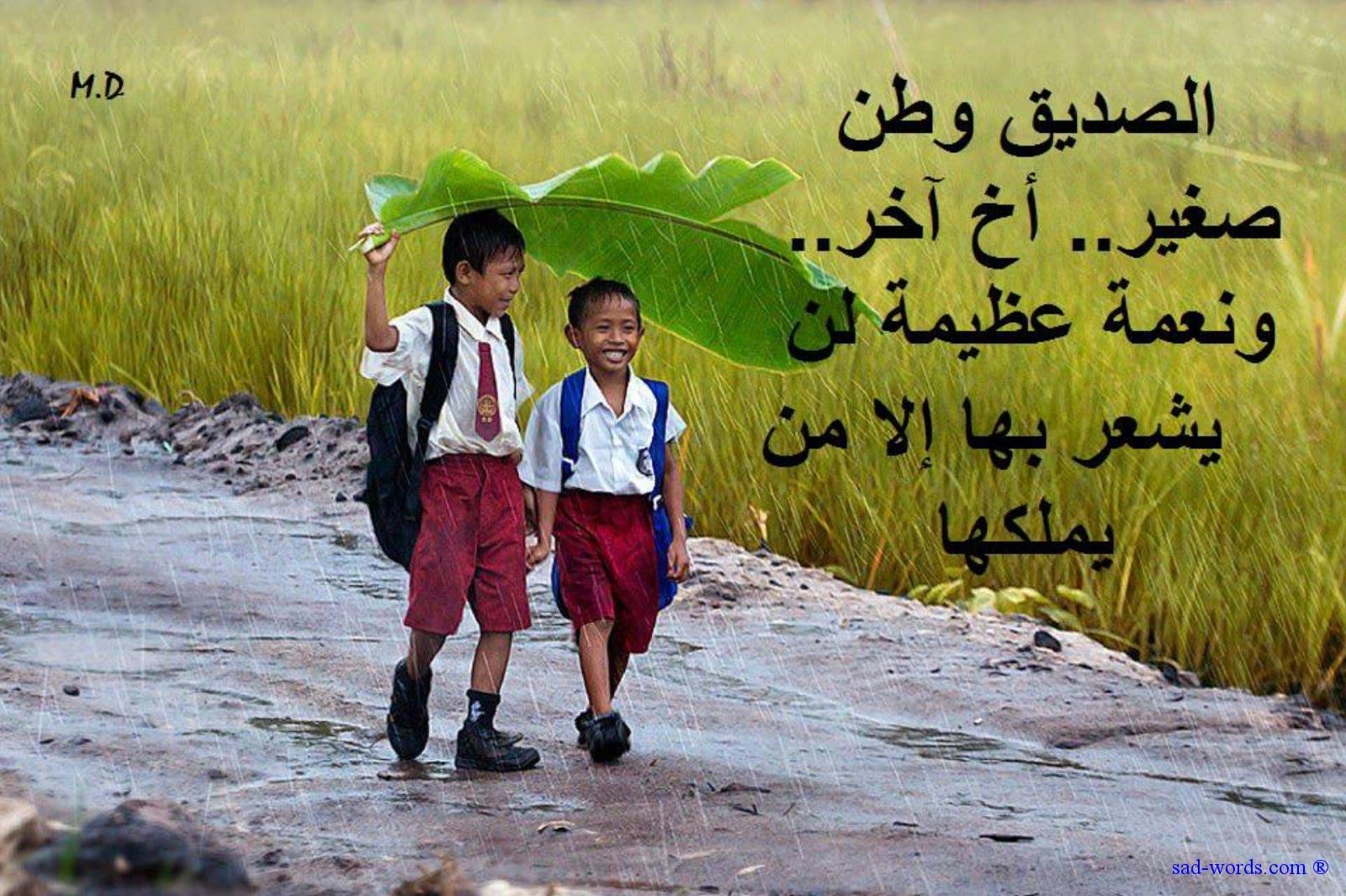صوره اجمل كلمات عن الصداقة