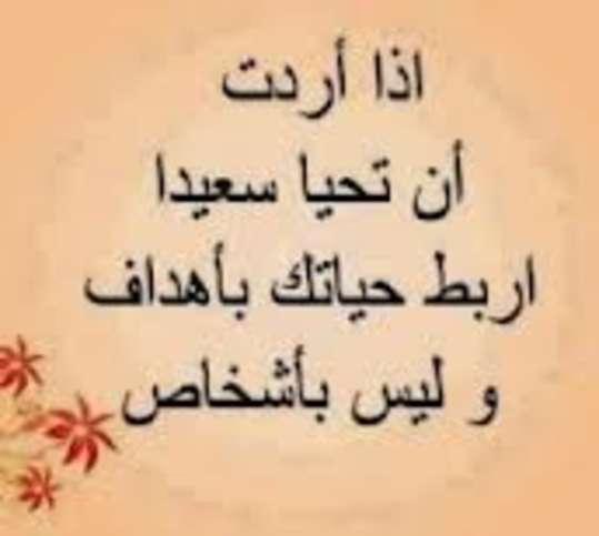 http://img.roro44.net/imgcache/2013/11/1728.jpg