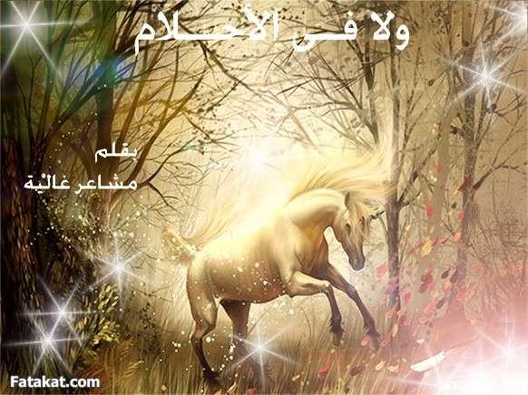 صوره رواية حكاية حبيبة مكتوبة
