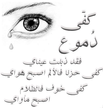 بالصور كوفر فيس بوك بنات 20160703 742