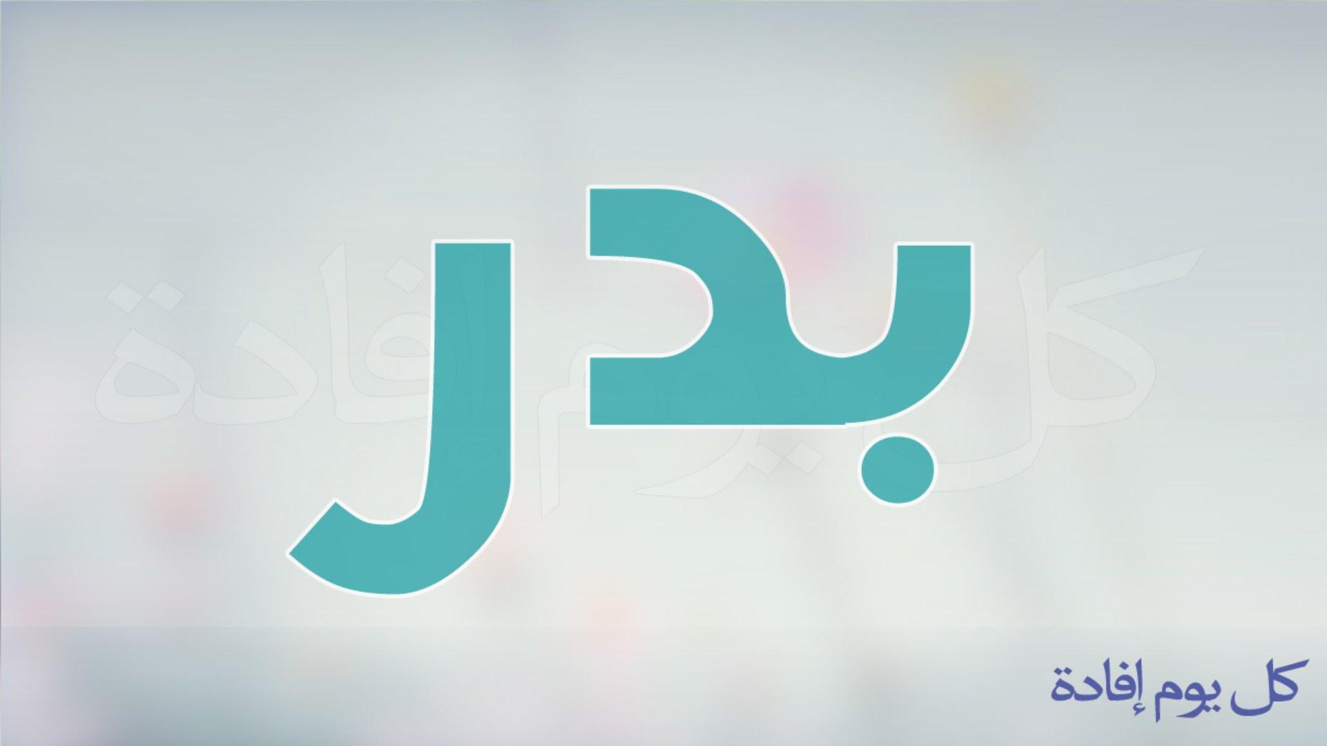 صوره مفرد كلمة بدو في قواميس ومعاجم اللغة العربية