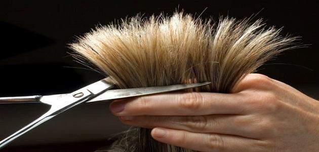صوره تفسير صبغة الشعر في المنام