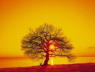 http://4.bp.blogspot.com/-w2sFHnaqkT0/Tq-ms0W0NTI/AAAAAAAAEVM/Mq4u_Aau8hU/s400/sunset+3.jpg