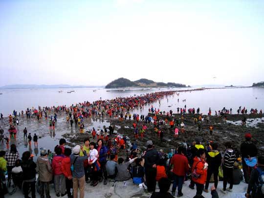 بالصور معجزة النبي موسى في كوريا 20160704 708