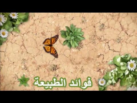 صوره تردد قناة فوائد الطبيعة 2017