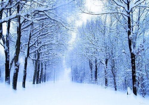 صوره صور فصل الشتاء الجميل