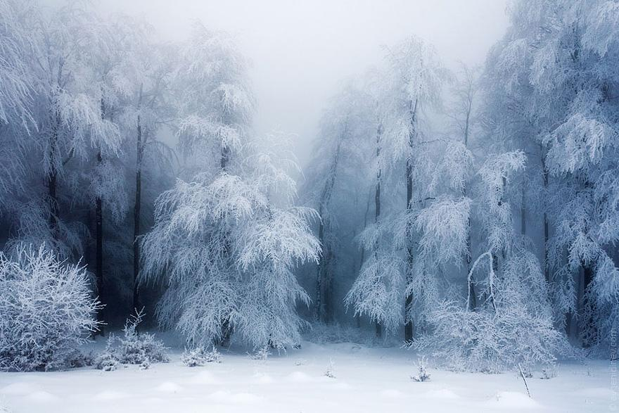 http://www.almrsal.com/wp-content/uploads/2014/04/beautiful-Landscapes-for-winter.jpg