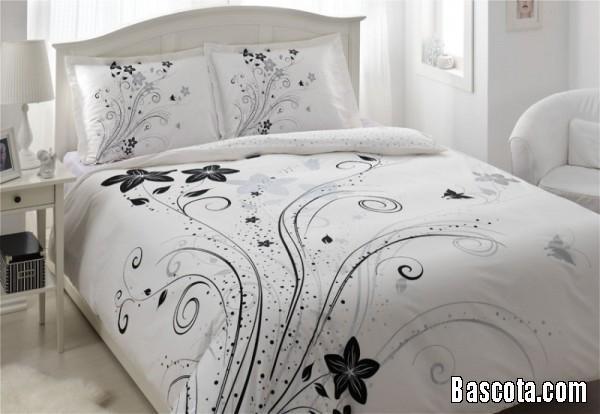 http://www.bascota.com/up/uploads/13635546432.jpg
