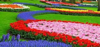 صوره موضوع انشاء عن الربيع فصل الجمال والبهجة قصير