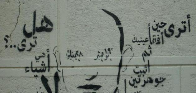 صوره شعر كلمات حامد زيد