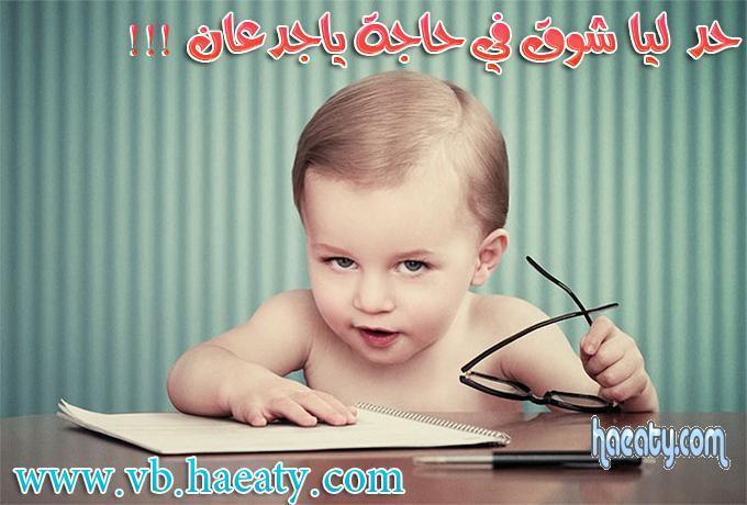 http://upload.haeaty.com/uploads/1393667933364.jpg