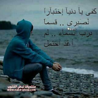http://vb.elmstba.com/imgcache/elmstba.com_1457064629_357.jpg