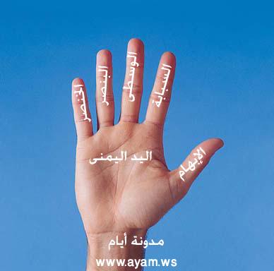 صوره اسماء اصابع اليد باللغة العربية الفصحي