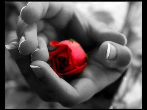 صوره قصة حب رومانسية جميله