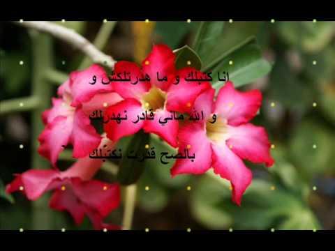 صوره اشعار باللهجة الجزائرية عن الحب