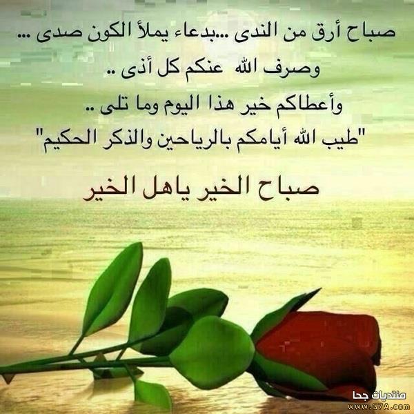 بالصور اجمل صور صباح الخير 20160708 679