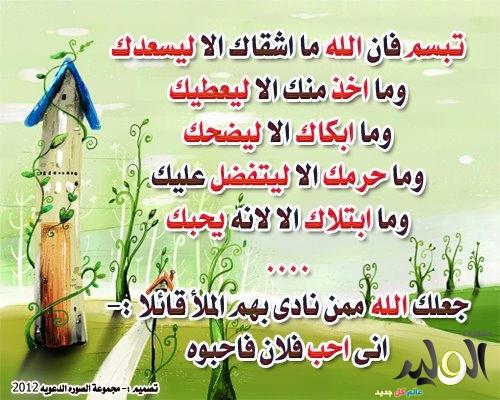 http://img.el-wlid.com/imgcache/170497.jpg