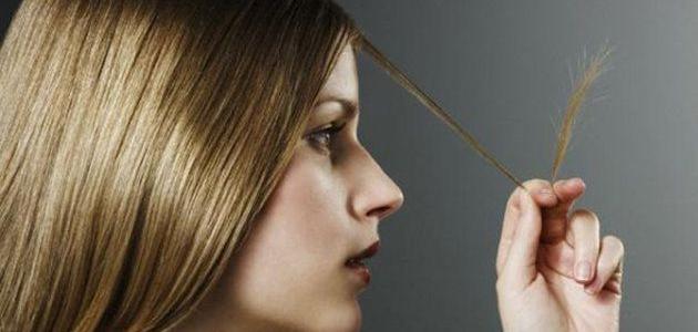 تحليل الشعر