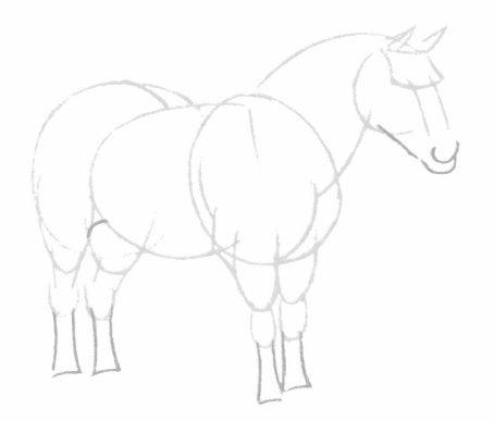 بالصور كيفية رسوم حصان للاطفال 20160709 752