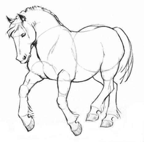 بالصور كيفية رسوم حصان للاطفال 20160709 760
