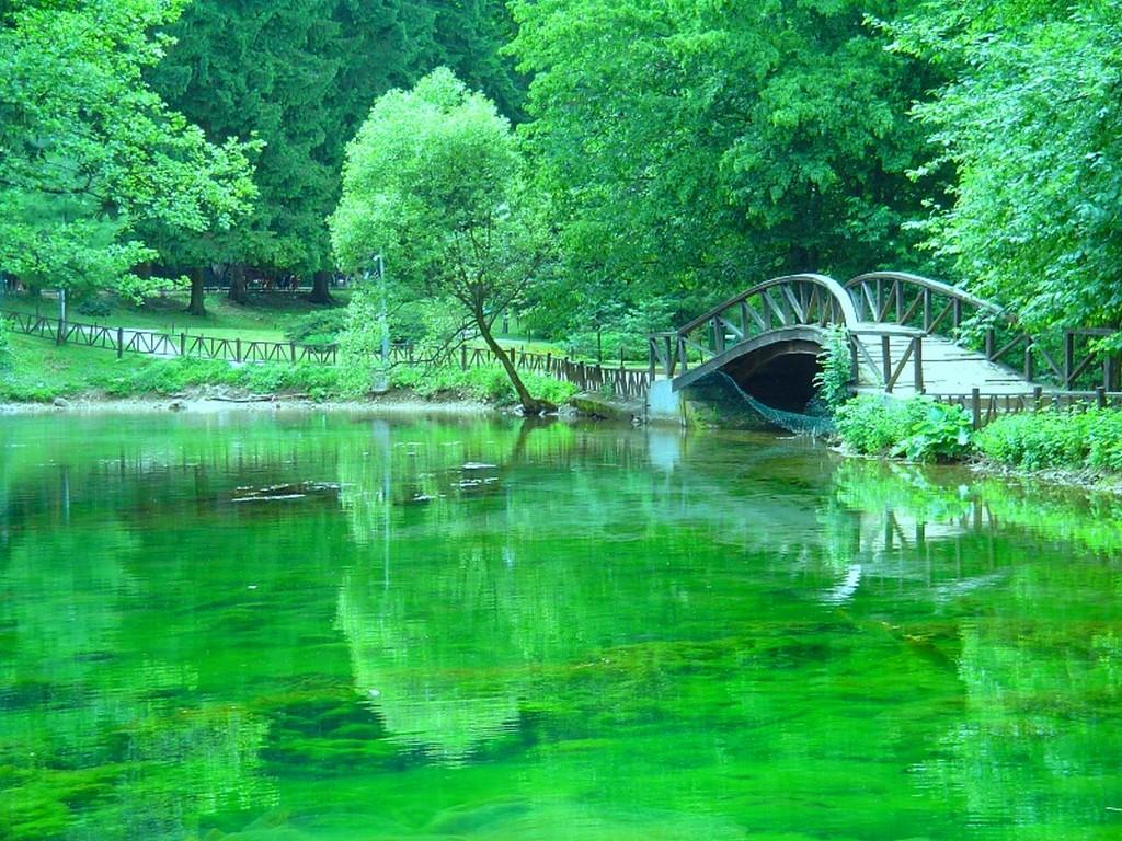 بالصور تفسير رؤية الماء الصافي في المنام 20160710 95