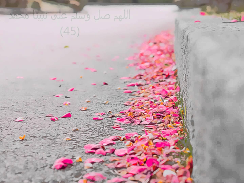 بالصور اللهم صلي على سيدنا محمد مزخرفة 20160711 130