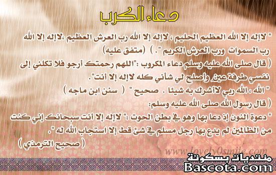 http://www.bascota.com/up/uploads/13525925874.jpg