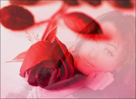 صوره دورة استاكوزا للدكتورة ناعمة الهاشمي