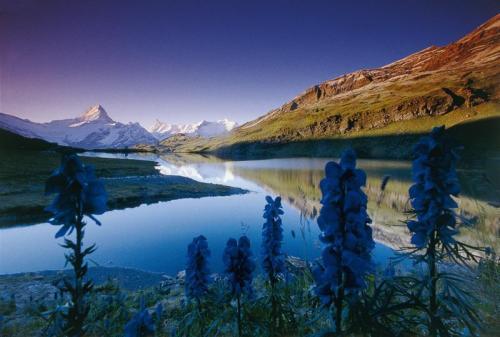 اجمل المناظر الطبيعية
