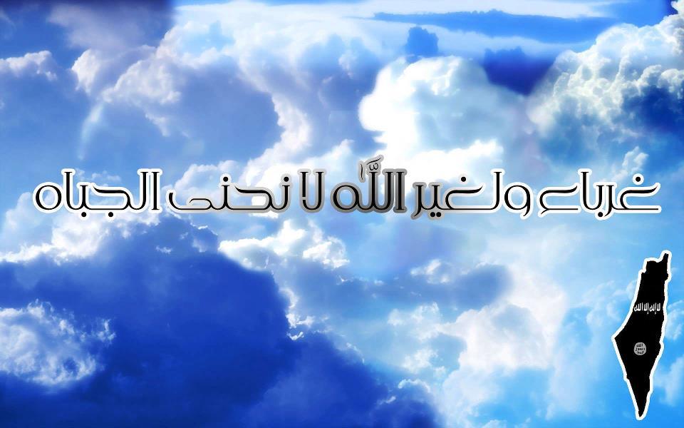 بالصور غرباء ولغير الله لا نحني الجباه 20160712 1430