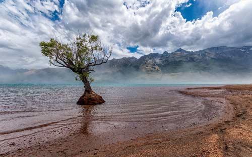 بالصور صور مناظر طبيعية من نيوزلندا 20160712 1855